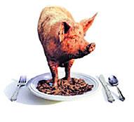 Unclean Food 1