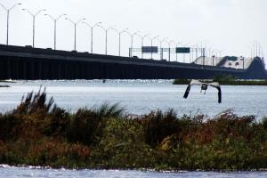 Nueces Bay Causeway 1