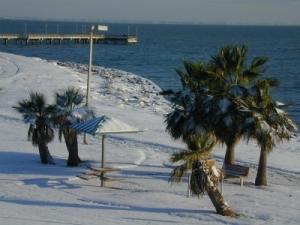 Corpus Christi Snow 1