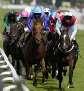 Horse Race 1