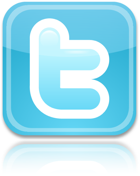 Twitter Icon Reflect